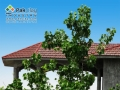 10-new-house-roof-tiles-products-styles-designs-ideas-pictures-gallery-images-photos