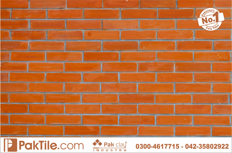 Pak Clay Contemporary Modern Traditional Living Room Red Bricks Gutka Wall Tile Rate Lahore Images Pakistan