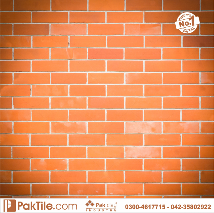 Pak clay pvc wall panels look outside home gas bricks front face tiles home design lahore pakistan images