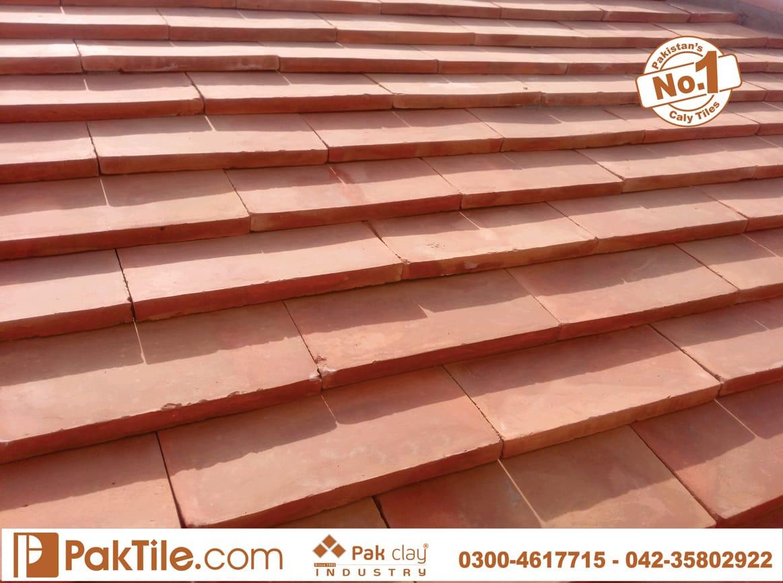 Roof Tiles House Design